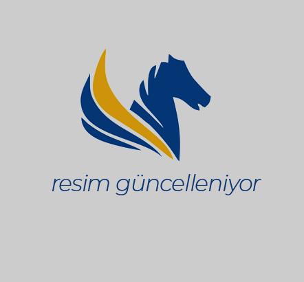 İstanbul Ofis Taşıma Süreçleri
